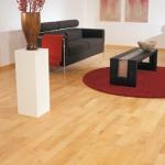 1||, Podele lemn. Gama culorilor deschise - CLICK AICI PENTRU DETALII