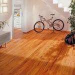 1||, Podele lemn. Fascinaţia roşiatică - CLICK AICI PENTRU DETALII